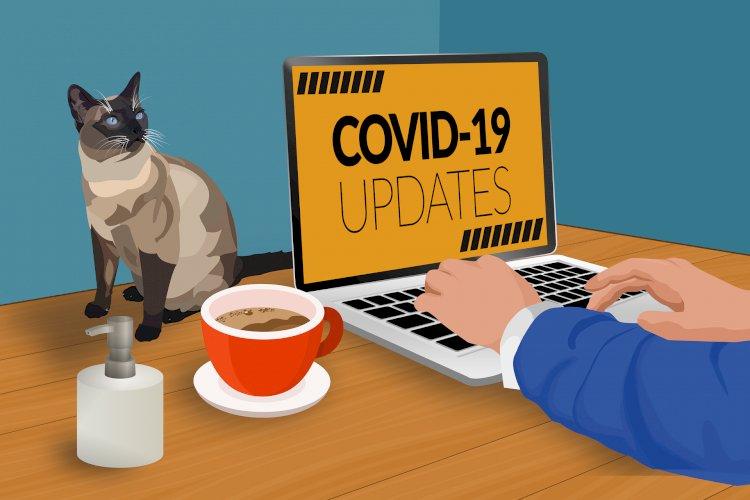 CoVID-19 e animali domestici: è possibile considerarli