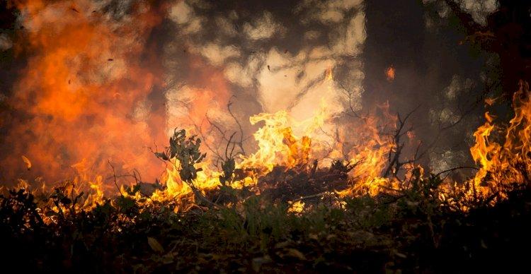 La prevenzione degli incendi