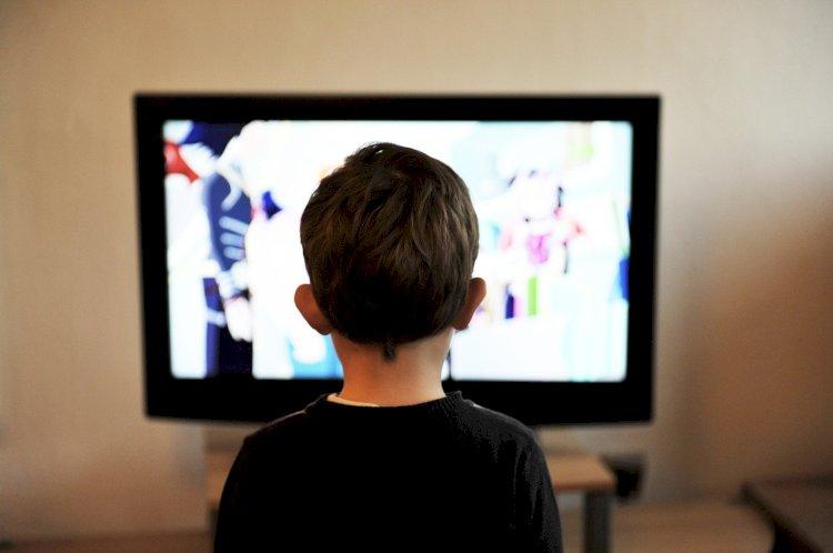 «Un popolo incolto, o educato solo dalla televisione, è più facile da governare»