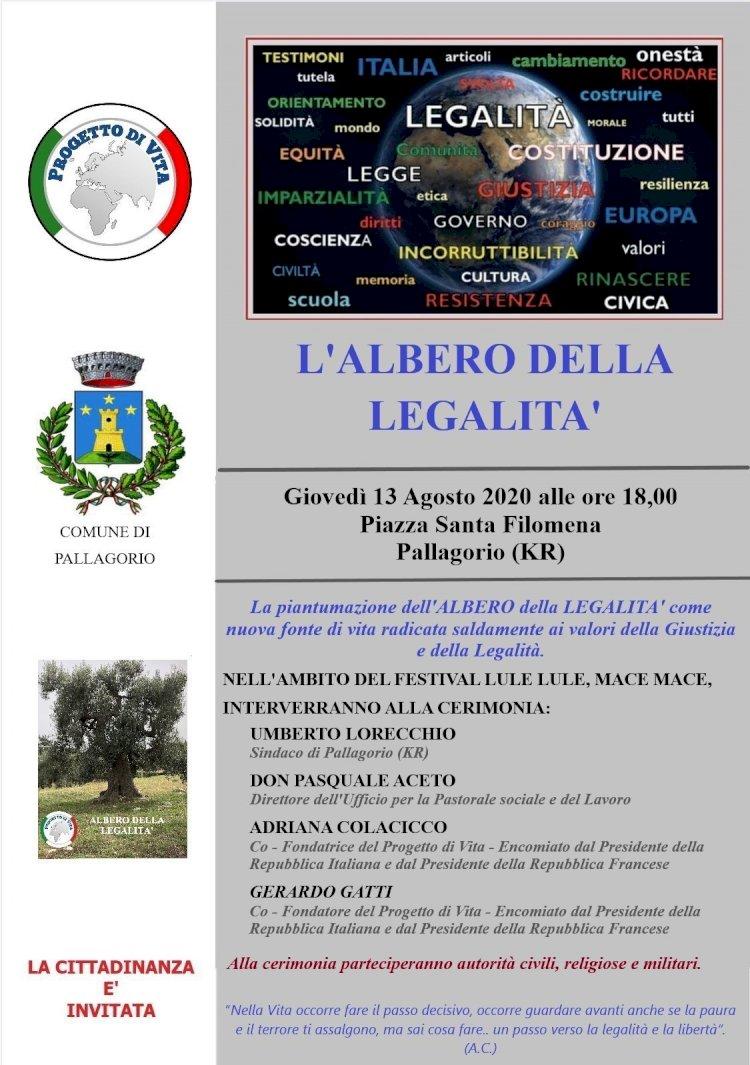 L'Albero della legalità a Pallagorio (Kr)