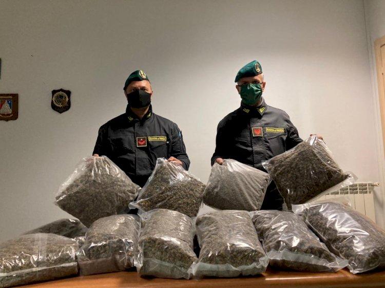 GdF: arrestato spacciatore con «reddito di cittadinanza». Sequestrati 17 kg di marijuana