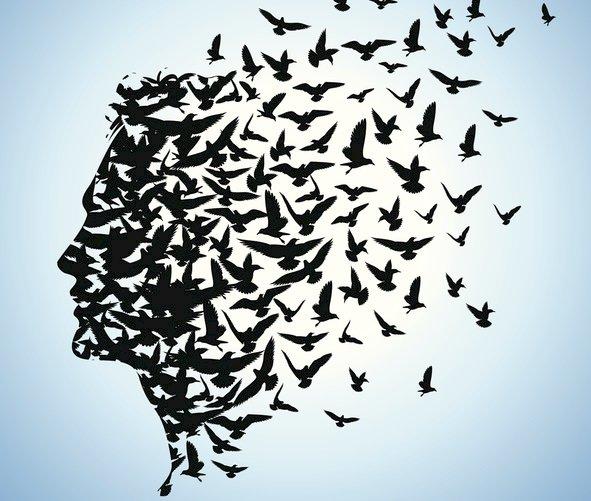 La libertà di esprimersi e la civiltà di agire