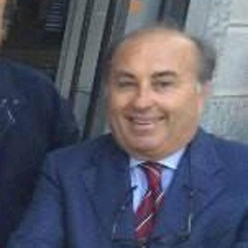 Seregnopoli, parla l'avvocato Ricci (legale di Lugarà): «Una ricostruzione mediatica»
