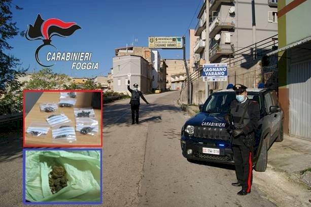 Foggia, arresti per traffico di droga