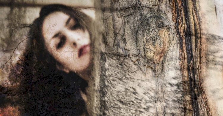 Nina Maroccolo. La rivoluzione degli eucalipti