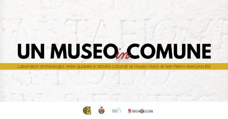Un museo in comune