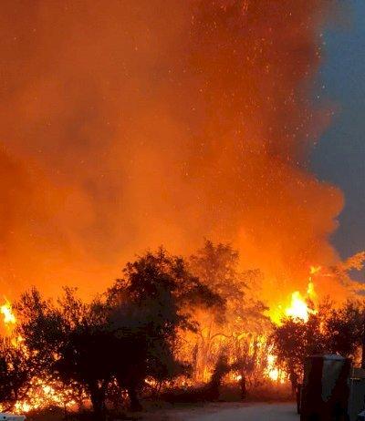 Abruzzo, un inferno pianificato in maniera militare?